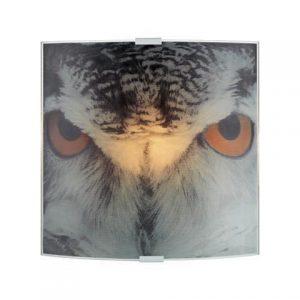 Owl vägglampa (Flerfärgad)